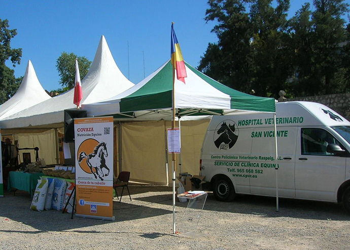 Asistencia veterinaria concurso de salto caballos