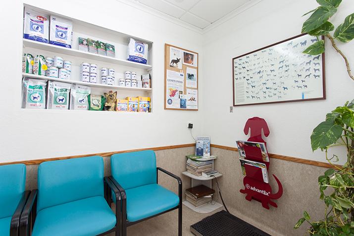 Sala de espera Clínica Elche